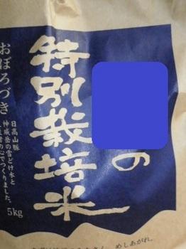 11月22日1.JPG